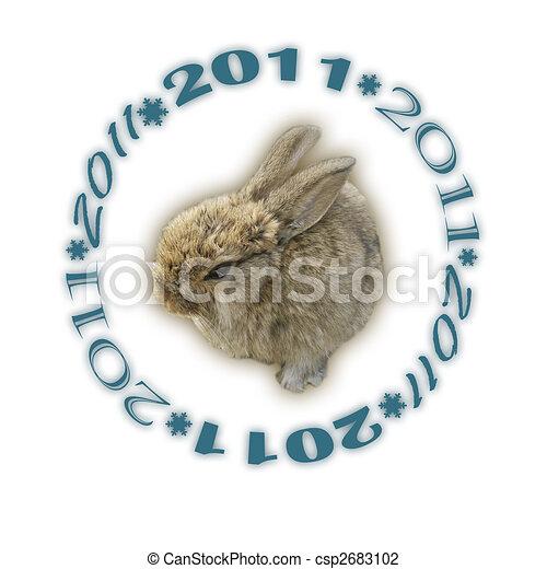 2011, coniglio - csp2683102