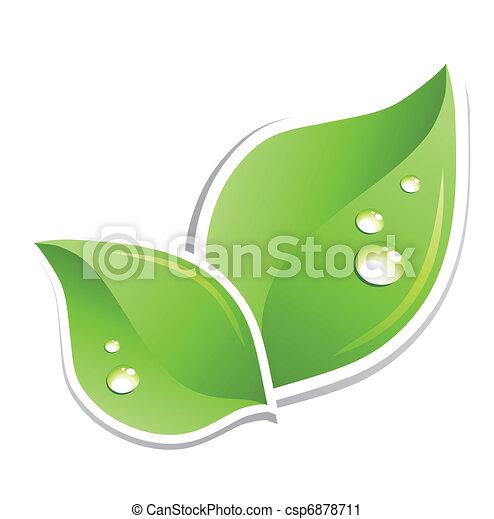 acqua, verde, vettore, foglia, droplets. - csp6878711