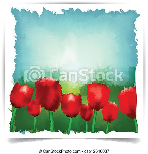 acquarello, estate, tulips, fondo. - csp12646037