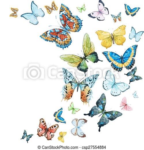 acquarello, farfalle - csp27554884