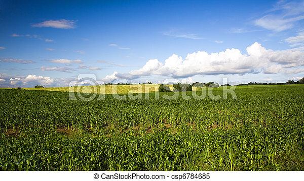 agricoltura - csp6784685