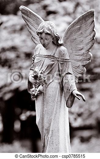 alato, angelo - csp0785515
