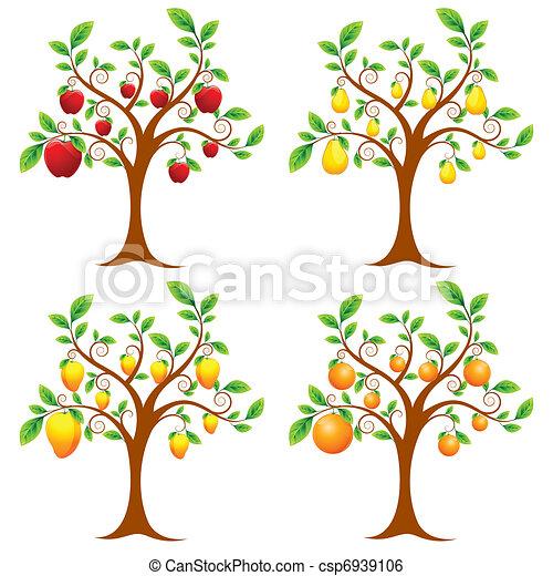 albero frutta - csp6939106
