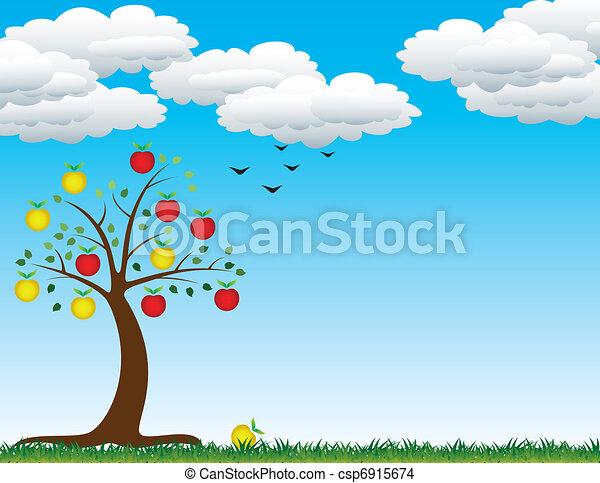 albero, mela - csp6915674