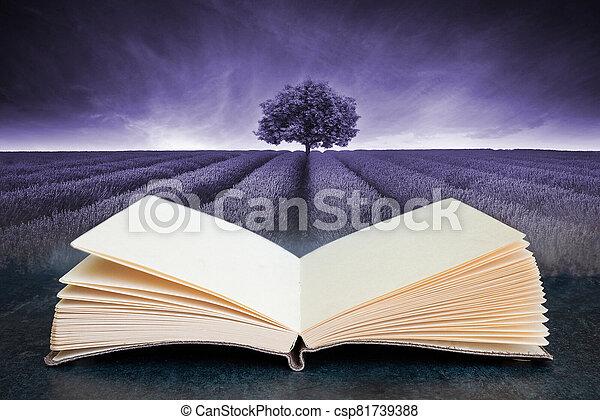 aperto, composito, lavanda, concettuale, libro, immagine, bello, campo, paesaggio, malva, albero, toned, singolo - csp81739388