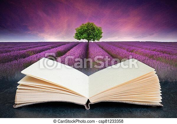 aperto, paesaggio, lavanda, concettuale, composito, albero, campo, tramortire, immagine, singolo, estate, libro, orizzonte, tramonto - csp81233358