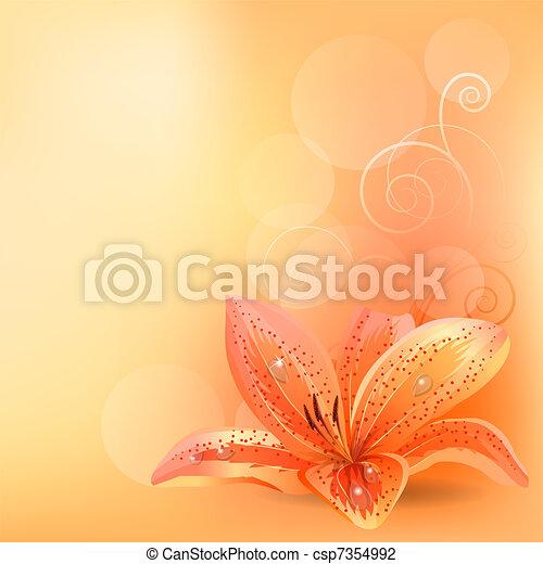 arancia, pastello, giglio, fondo, luce - csp7354992