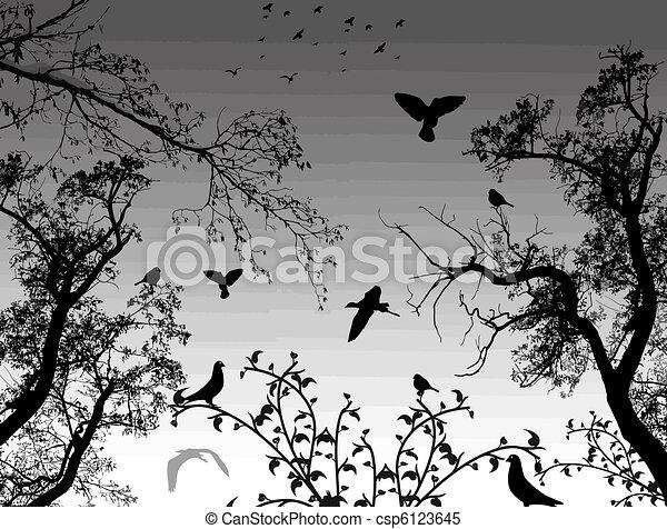 astratto, fondo, natura - csp6123645