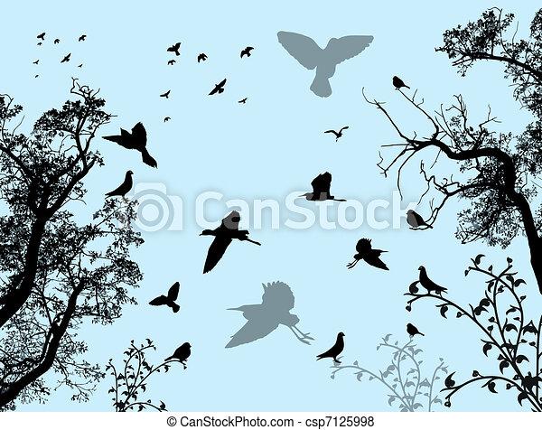 astratto, fondo, natura - csp7125998