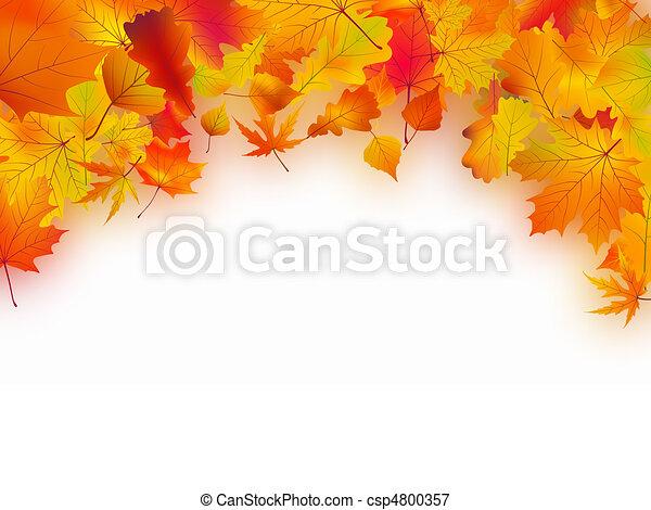 autunno parte, caduto, fondo - csp4800357