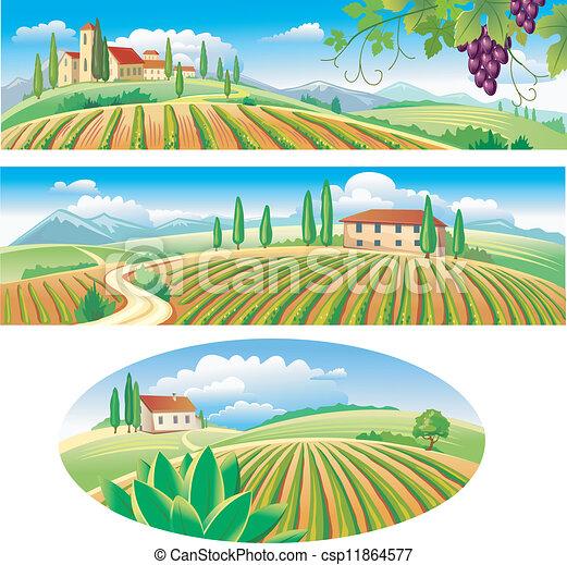 bandiere, agricoltura, paesaggio - csp11864577
