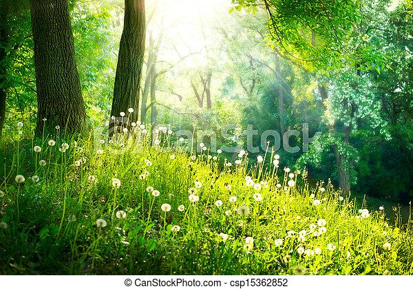 bello, paesaggio., primavera, nature., albero, erba verde - csp15362852