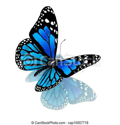 blu, colorare, farfalla, bianco - csp10007718