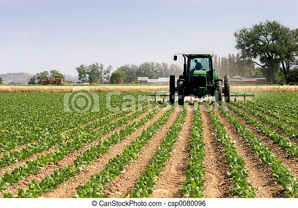 campi, aratura, trattore - csp0080096