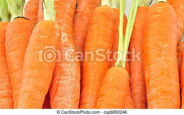 carote, merits - csp6650246