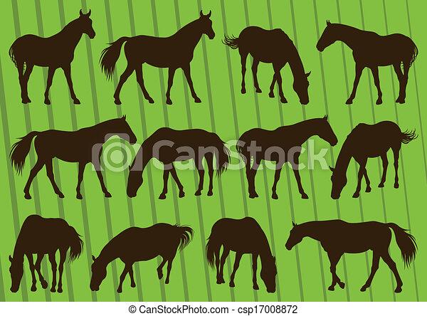 cavallo, illustrazione, silhouette, collezione, fondo, sport - csp17008872