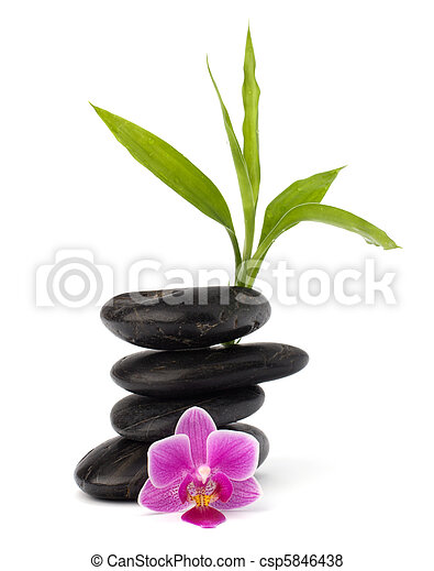 ciottoli, concept., zen, balance., sanità, terme - csp5846438