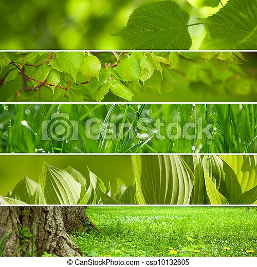 collage, fondo., verde, natura - csp10132605