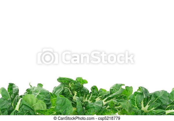 confine vegetale, verde - csp5218779