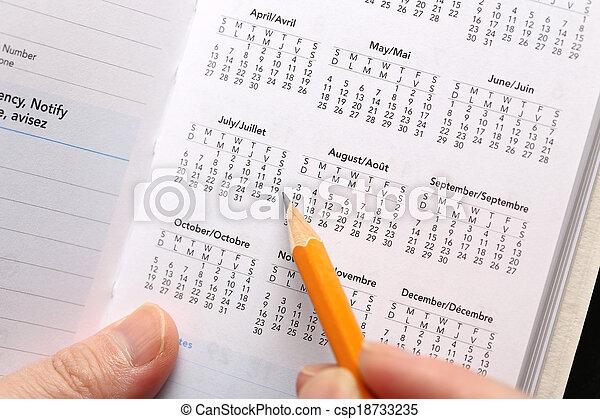 controllo, data, calendario, importante - csp18733235