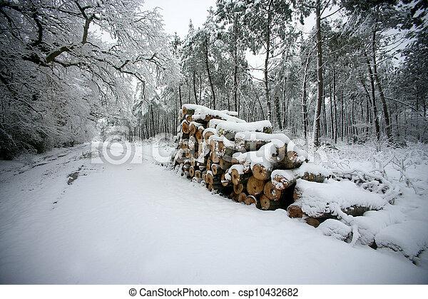 coperto, lato, registrare, strada, neve - csp10432682