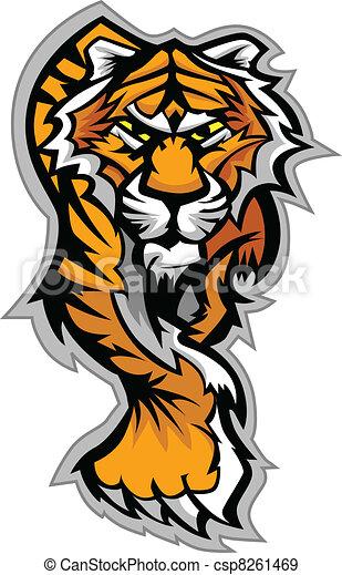 corpo, tiger, vettore, mascotte, grafico - csp8261469