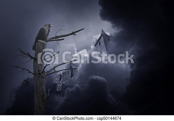 corvo, castello, misterioso, medievale - csp50144674