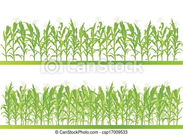 dettagliato, campagna, granaglie, illustrazione, campo, vettore, fondo, paesaggio - csp17009533