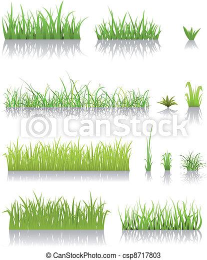 erba, verde, set - csp8717803