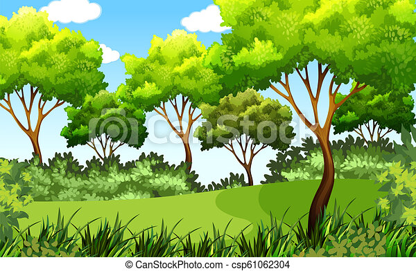 esterno, parco, verde, scena - csp61062304