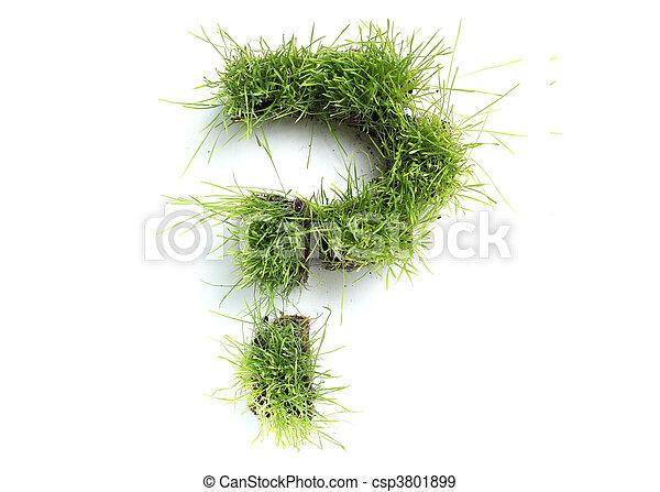 fatto, domanda, -, marchio, simboli, erba - csp3801899