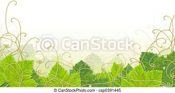 foglia acino uva, nota calce - csp0391445
