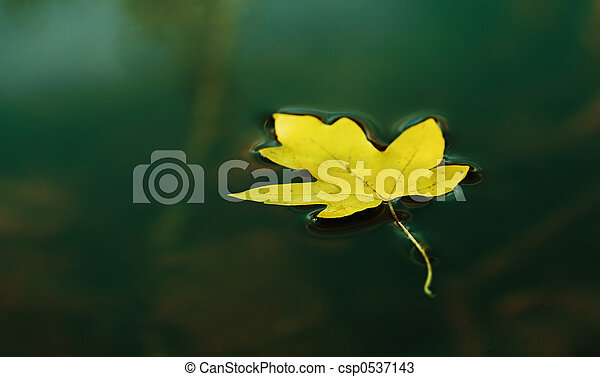 foglia autunno - csp0537143