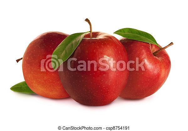 foglie, albero, mele, rosso - csp8754191