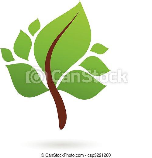 foglie, verde, ramo - csp3221260