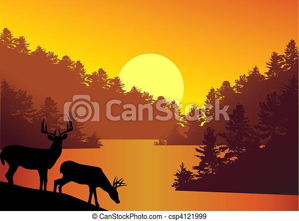 fondo, natura - csp4121999