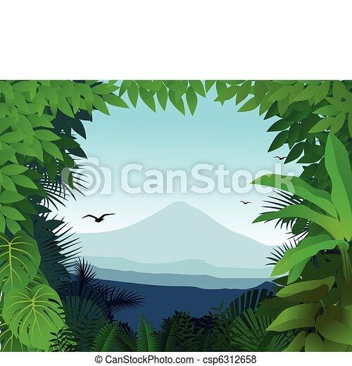 fondo, natura - csp6312658