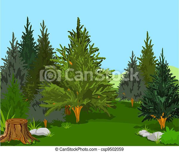 foresta, paesaggio - csp9502059