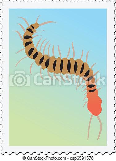 francobollo, centopiedi - csp6591578