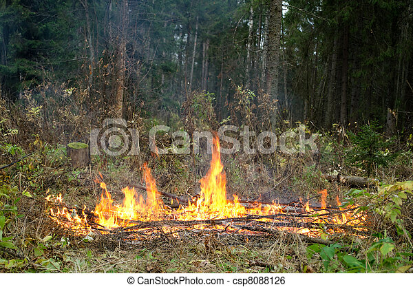 fuoco - csp8088126