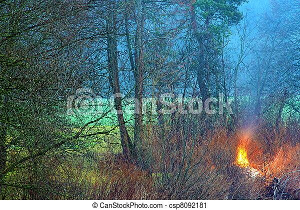 fuoco - csp8092181
