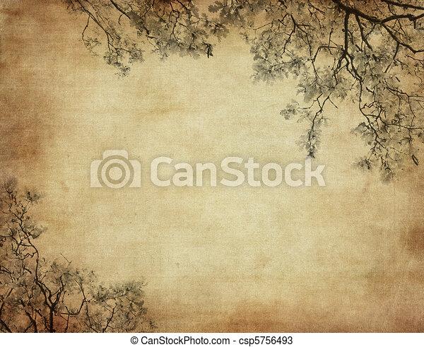 grunge, spazio, testo, immagine, fondo, floreale, o - csp5756493