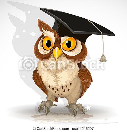 gufo, berretto, saggio, laureato - csp11216207