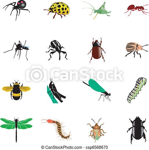 insetti, set - csp6568670
