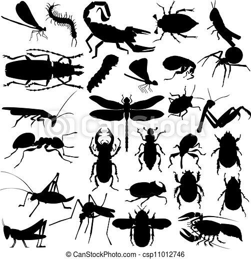insetti, silhouette - csp11012746
