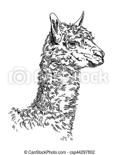 mano, vettore, lama, illustrazione, disegno - csp44297802