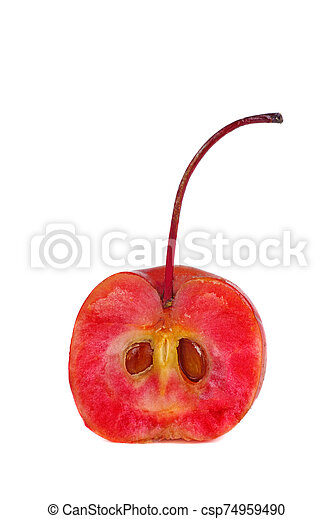 mela, mezzo, granchio - csp74959490