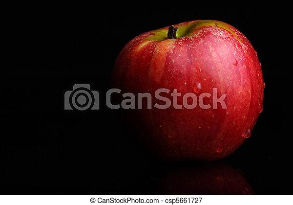 mela, rosso - csp5661727