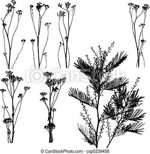 natura, catalogo - csp5239458