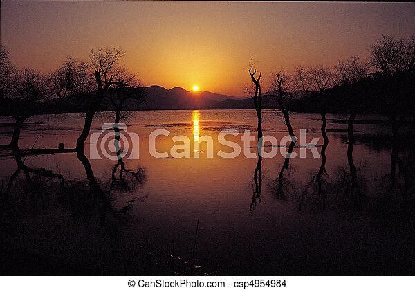 natura, vista - csp4954984